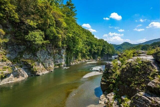 入間川のライブカメラ