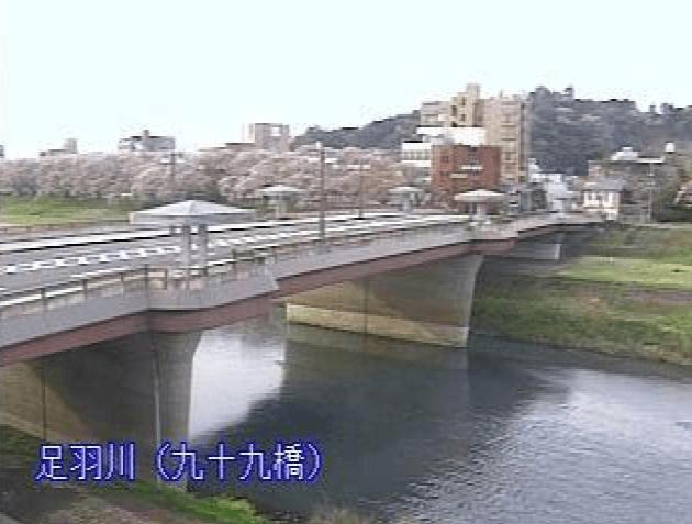 福井市足羽川