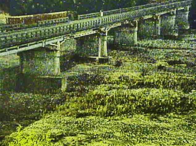 安曇川常安橋