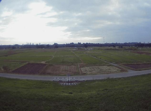 荒川36.4KP右岸