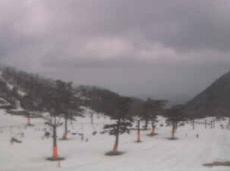 大仙スキー場