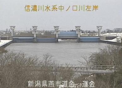 中ノ口川道金