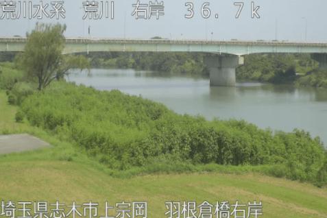 荒川羽根倉橋