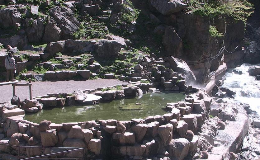 地獄谷温泉