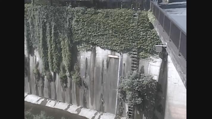 石神井川加賀橋
