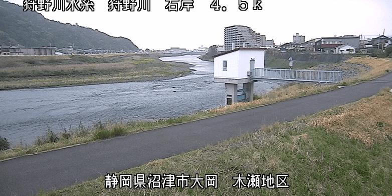 狩野川木瀬