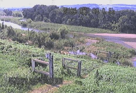高麗川坂戸水位観測所