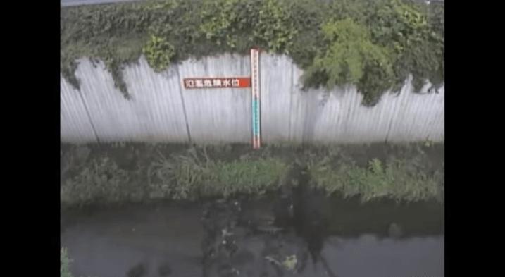 谷沢川丸山橋