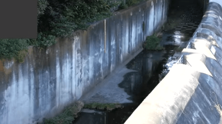 石神井川向台