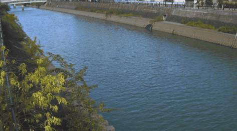 笹目川根木橋上流