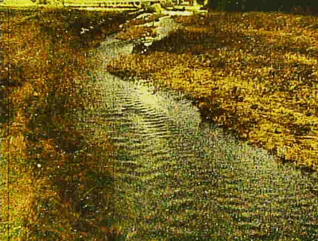 石田川大床