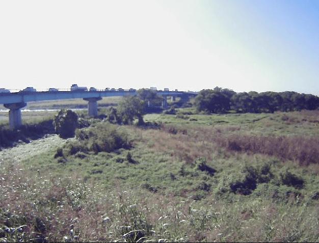 越辺川-1.8KP左岸