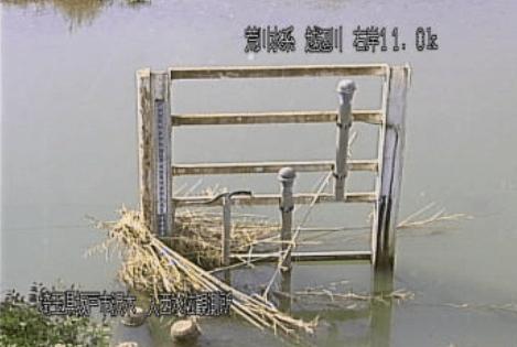 越辺川入西水位観測所