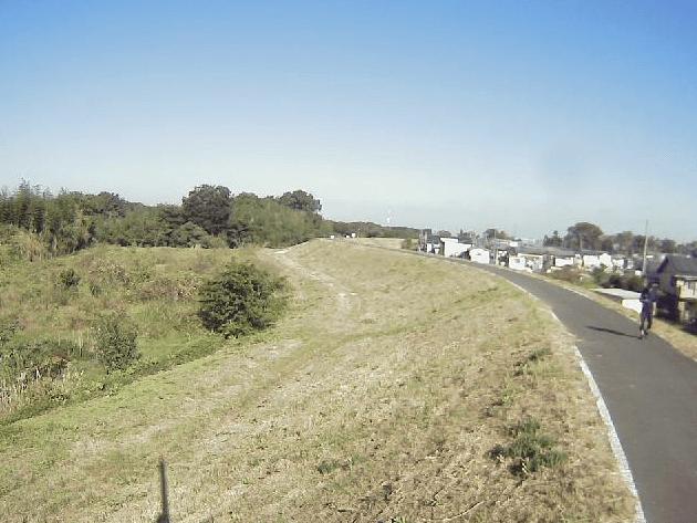 越辺川0.8KP左岸