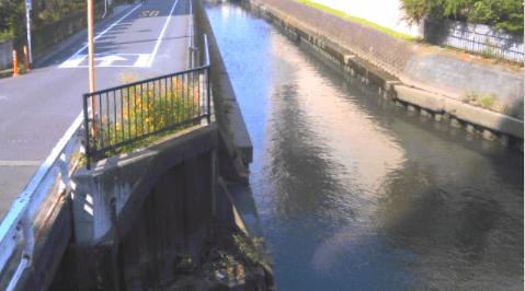 菖蒲川下前谷橋