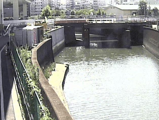 石神井川新柳橋