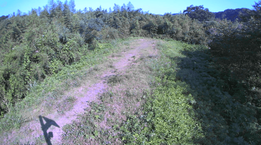 多摩川478kp