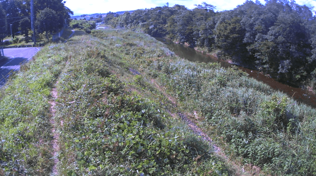 多摩川50k2
