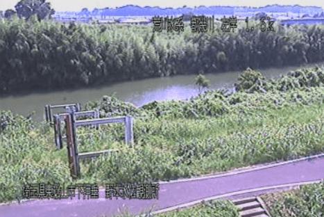 都幾川野本水位観測所