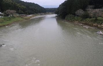 柳瀬橋上流