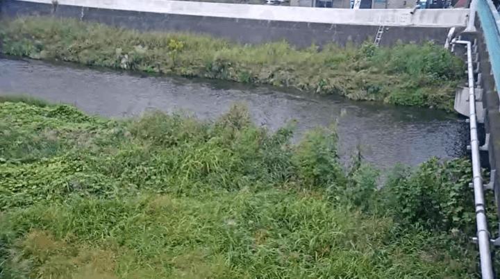 柳瀬川高橋