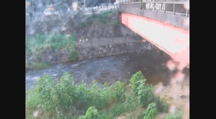 柳瀬川金山橋